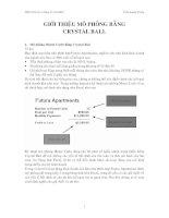 Tài liệu Lý thuyết cơ bản về Crystal Ball pdf