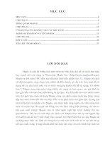 ỨNG DỤNG của MAPLE vào bài TOÁN KHẢO sát hàm số và TÍCH PHÂN TRONG dậy học TOÁN TRUNG học PHỔ THÔNG