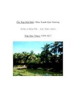 Tài liệu Âm nhạc lớp 5 - Ôn Tập Bài Hát: Màu Xanh Quê Hương (Dân ca Khơ Me – Lời: Nam Anh) docx
