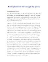 Tài liệu Kinh nghiệm diệt côn trùng gây hại gia súc pdf