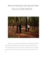 Tài liệu Một số vấn đề cần lưu ý khi trồng mới và khai thác cao su ở Thừa Thiên Huế pdf