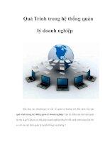 Tài liệu Quá Trình trong hệ thống quản lý doanh nghiệp ppt