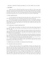 Tài liệu CHƯƠNG 5: PHƯƠNG PHÁP TẠO HÌNH VÀ CẮT TỈA TRÊN CÂY ĂN TRÁI ppt