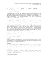 Tài liệu Essay Writing for a Score of 6.0 on the TOEFL and TWE pdf