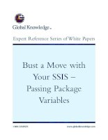Tài liệu Bust a Move with Your SSIS – Passing Package Variables docx
