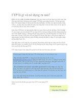 Tài liệu FTP là gì và sử dụng ra sao? pdf