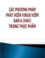 Tài liệu CÁC PHƯƠNG PHÁP PHÁT HIỆN VIRUS VIÊM GAN A (HAV) TRONG THỰC PHẨM doc
