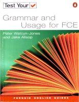 Tài liệu test your grammar doc