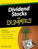 Tài liệu Dividend Stocks For Dummies Part 1 pptx