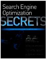 Search engine optimization (SEO) secrets