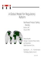 Tài liệu A Global Model for Regulatory Reform doc