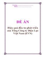 """Tài liệu Đề án """"Hiệu quả đầu tư phát triển của Tổng Công ty Điện Lực Việt Nam (EVN)"""" pptx"""