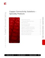 Tài liệu w w w . a d c . c o m • + 1 - 9 5 2 - 9 3 8 - 8 0 8 0 • 1 - 8 0 0 - 3 6 6 - 3 8 9 1 127 Copper Connectivity Solutions – Specialty Products Copper Connectivity Solutions – Specialty Products pptx