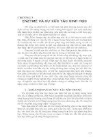 Tài liệu CHƯƠNG 3: ENZYME VÀ SỰ XÚC TÁC SINH HỌC pdf