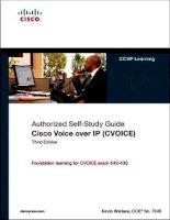 Tài liệu CISCO VOICE OVER IP (CVOICE) pptx