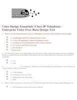 Tài liệu Cisco IP Telephony- Enterprise Voice Over Data Design Test pdf