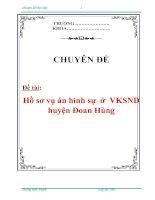 Tài liệu Chuyên đề: Hồ sơ vụ án hình sự ở VKSND huyện Đoan Hùng pdf