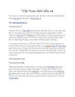 Tài liệu Việt Nam thời tiền sử pdf
