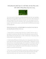 Tài liệu Giải pháp bón phân hợp lý và tiết kiệm cho lúa đông xuân 2007-2008 ở đồng bằng sông Cửu Long docx