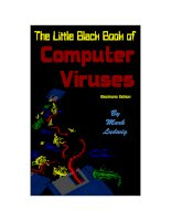 Tài liệu The Little Black Book of Computers Viruses pdf