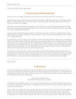 Tài liệu Phong tục Việt Nam ppt