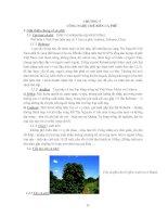 Tài liệu Công nghệ chế biến cà phê_Chương 5 docx