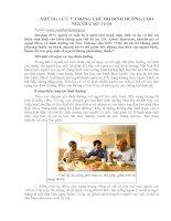 Tài liệu NHỮNG LƯU Ý TRONG CHẾ ĐỘ DINH DƯỠNG CHO NGƯỜI CAO TUỔI pptx