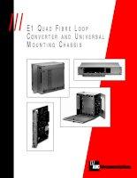 Tài liệu E1 QUAD FIBRE LOOP CONVERTER AND UNIVERSAL MOUNTING CHASSIS doc