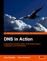 Tài liệu DNS in Action A detailed and practical guide to DNS implementation docx