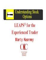 Tài liệu M Kearney - Powerful Techniques For Options Trading Success(pdf) ppt