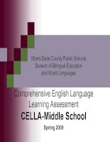 Tài liệu Comprehensive English Language Learning Assessment ppt