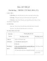 Tài liệu Kỹ thuật - TRỒNG CÂY RAU, HOA (T1) docx