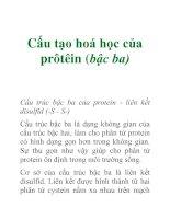 Tài liệu Cấu tạo hoá học của prôtêin (bậc ba) pdf