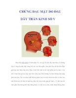 Tài liệu CHỨNG ĐAU MẶT DO ÐAU DÂY THẦN KINH SỐ V pdf