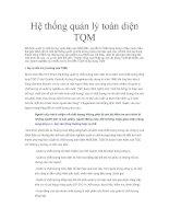 Tài liệu Hệ thống quản lý toàn diện TQM pdf
