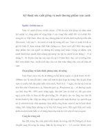 Tài liệu Kỹ thuật sản xuất giống và nuôi thương phẩm vẹm xanh pdf