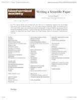 Tài liệu Writing a scientific paper ppt
