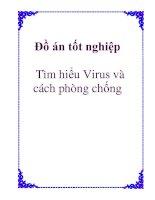 Tài liệu Luận văn: Tìm hiểu Virus và cách phòng chống docx