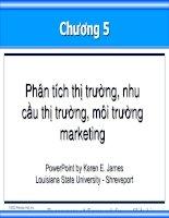 Tài liệu Phân tích thị trường, nhu cầu thị trường, môi trường Marketing pptx