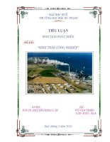 Tài liệu TIỂU LUẬN: SINH THÁI CÔNG NGHIỆP pdf