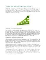 Tài liệu Thương hiệu và thương hiệu doanh nghiệp pdf