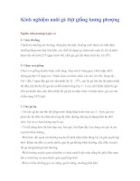 Tài liệu Kinh nghiệm nuôi gà thịt giống lương phượng pdf