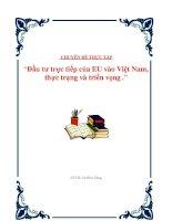 """Tài liệu Luận văn: """"Đầu tư trực tiếp của EU vào Việt Nam, thực trạng và triển vọng"""