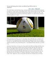 Tài liệu Tại sao trái bóng chính thức của World Cup 2010 có tên là Jabulani ppt