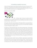 Tài liệu Tìm Pass WEP của mạng WiFi và cách bảo vệ pptx