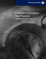 Tài liệu Corporate Governance Best Practices - A Blueprint for the Post-Enron Era docx