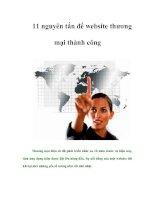 Tài liệu 11 nguyên tắc để website thương mại thành công doc