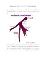 Tài liệu RỐI LOẠN DẪN TRUYỀN TRONG THẤT pdf