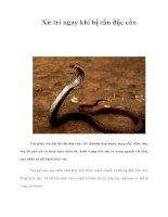 Tài liệu Xử trí ngay khi bị rắn độc cắn Vài phút sau khi bị rắn độc cắn, vết pptx