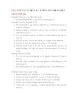 Tài liệu Câu hỏi ôn thi Tài chính doanh nghiệp pdf